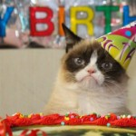 Happy Birthday, Grumpy Cat! (GALLERY)