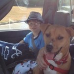 Dog's Tear-Jerking Tale Transforms Autistic Boy