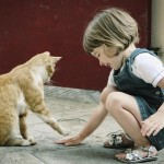 Does Having A Pet Help A Child's Development & Social Skills?