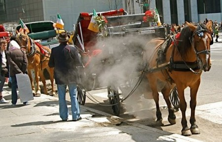 A ban on horse-drawn carriages in NYC is being stalled. Animal activists want to put an end to what they consider a cruel and inhumane industry, while proponents believe it's a