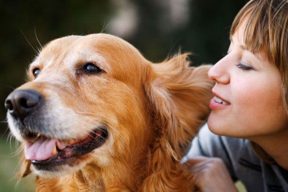 The AHA has proven that pets, especially dogs, are good for your health.