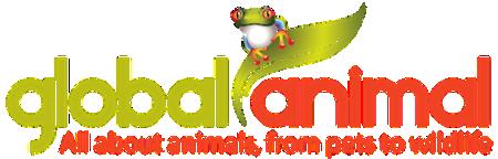 GLOBAL ANIMAL