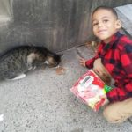 The Real Batman: 5-Year-Old Boy Helps Stray Cats